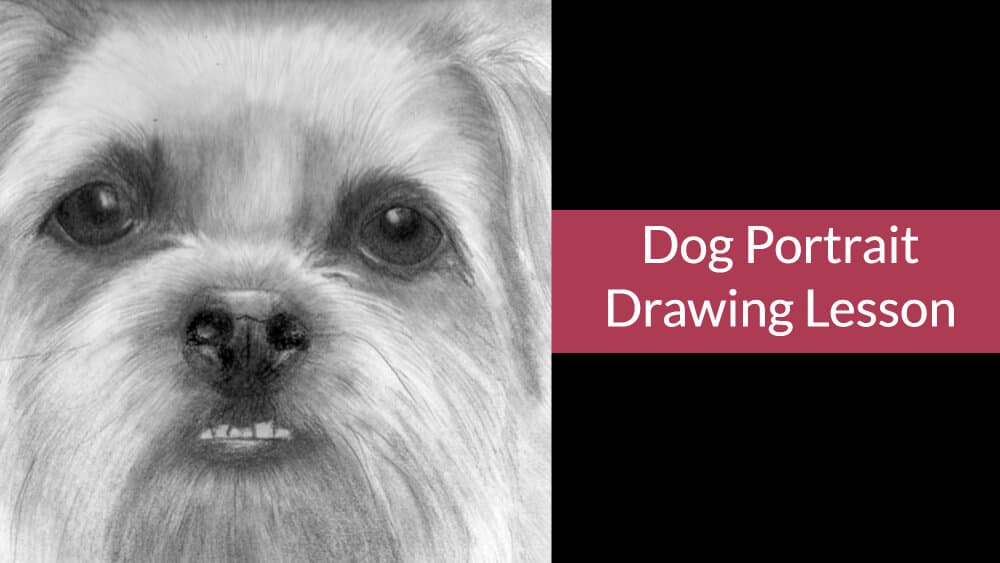Dog Portrait Drawing Lesson – Portrait of Wilf – as taught at the Coast to Coast Convention