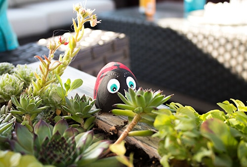 ladybug garden stone