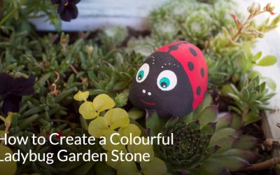 How to Create a Colourful Ladybug Garden Stone