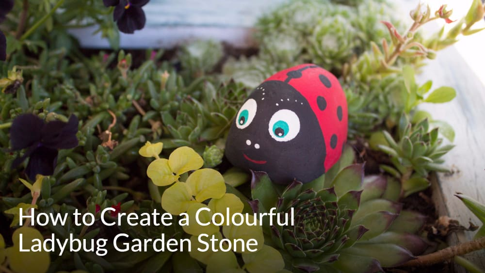 How to Create a Colourful Ladybug Garden Stone