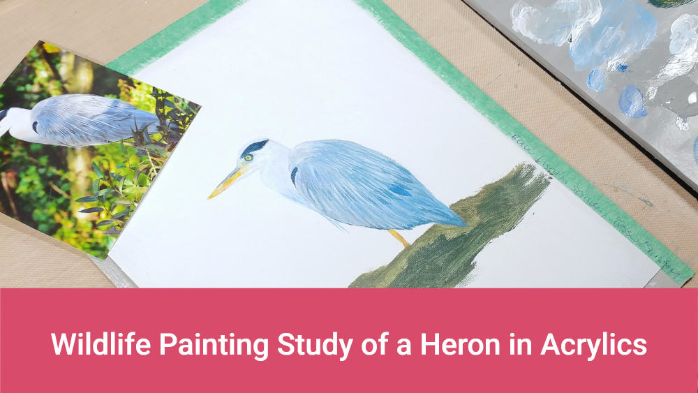 wildlife painting study of a heron