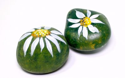 Creating Your Own Spirit Stones by Painting on Rocks – Coming Up Daisies